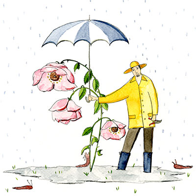 Mondkalender-Gärtnern schlechtes Wetter Illustration