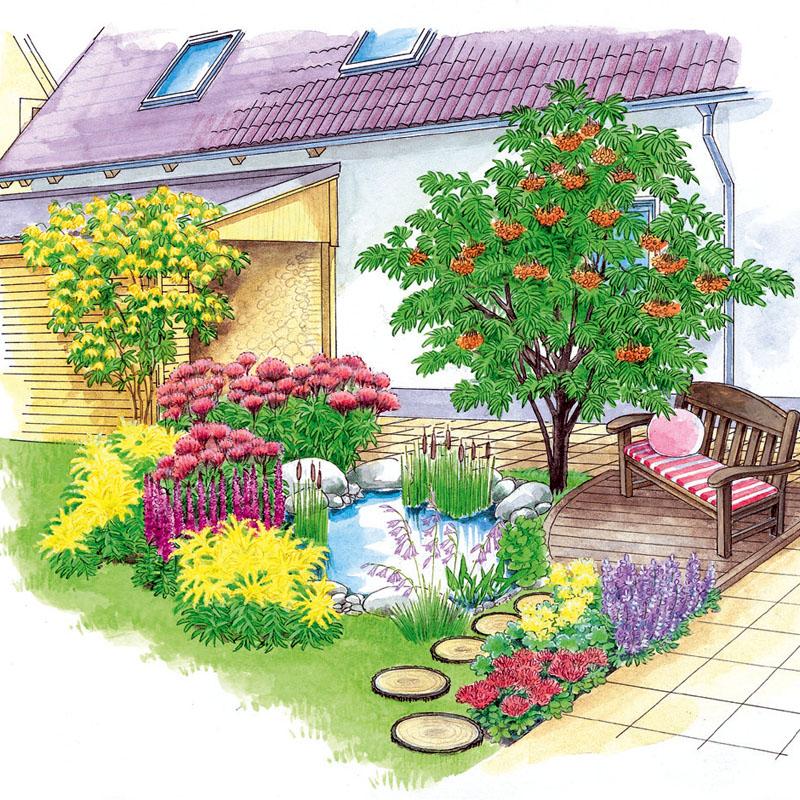 Illustration eines Hausbaums vor einem Gartenteich