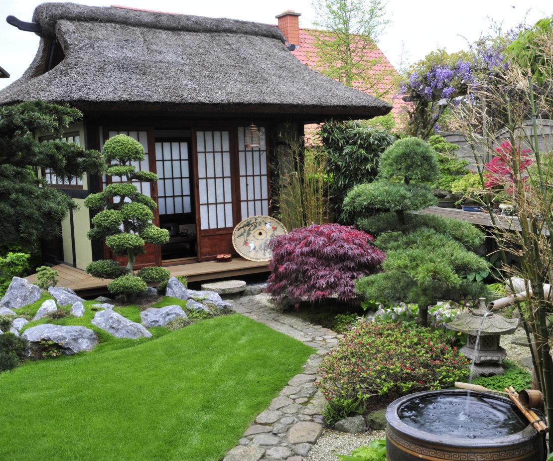 Bonsai im Garten mit einem Haus
