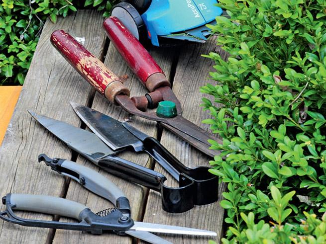 Die passenden Werkzeuge für den Formschnitt von Gehölzen im eigenen Garten.