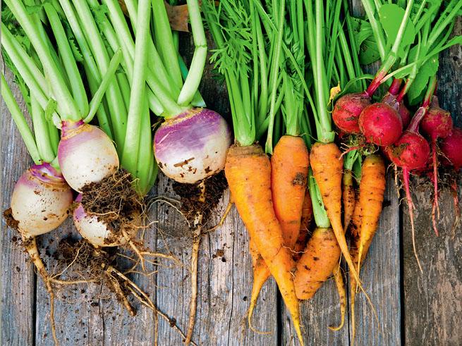 Mittel- und Schwachzehrer im Gemüsebeet erleichtern es, die Fruchtfolge zu planen.