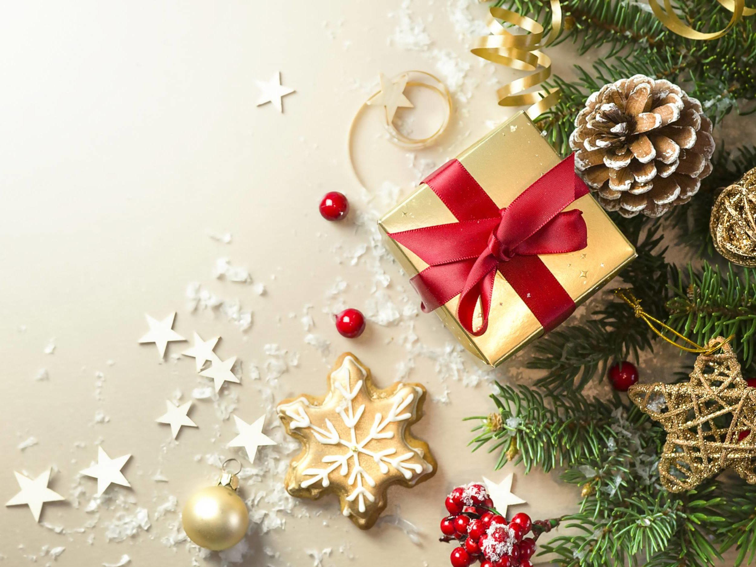 Ursprung Weihnachtsbaum.Als Der Weihnachtsbaum In Die Stuben Kam Gartenflora