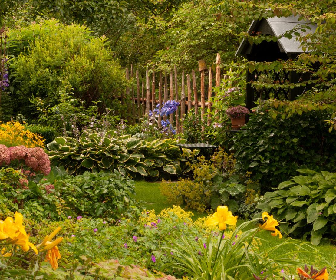 Cottage Garten mit Stauden