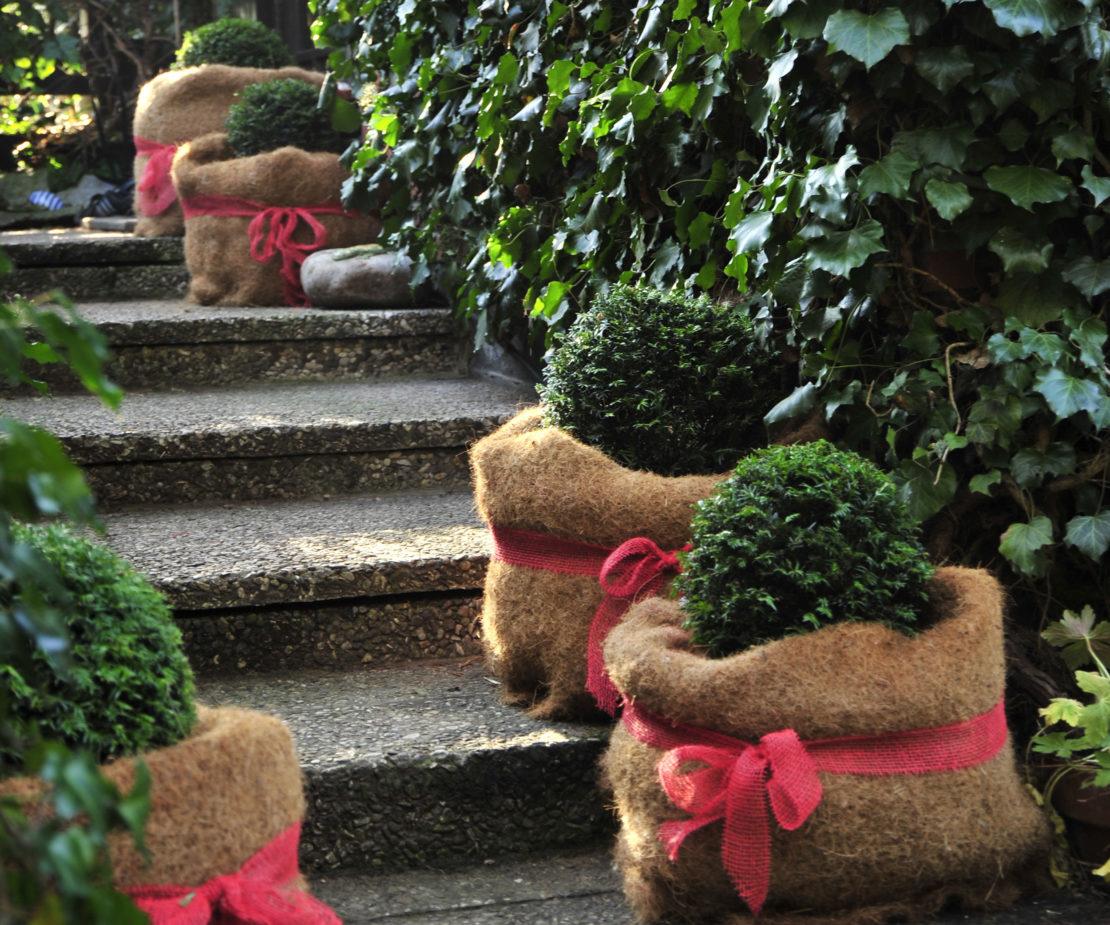 Dekoration in einem Garten im Winter: Kübel mit Schleifen