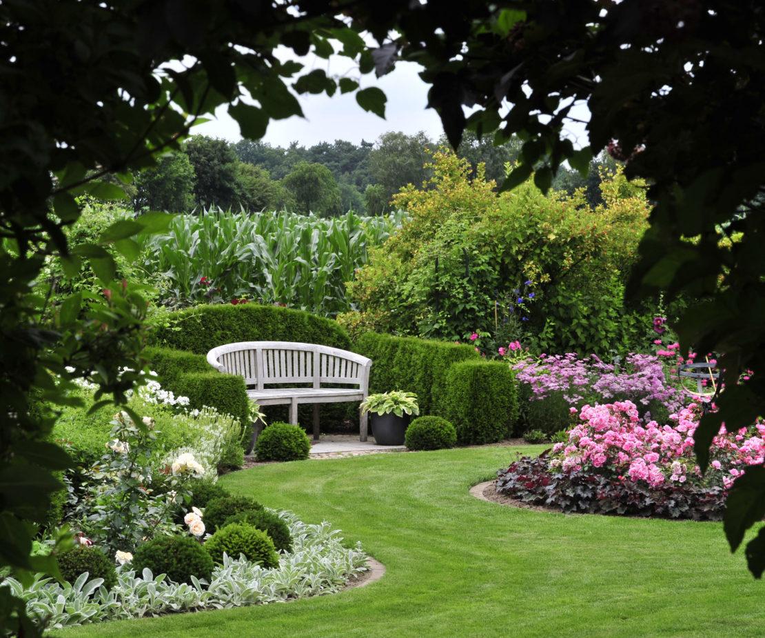 Einblick in den Garten mit einer Bank