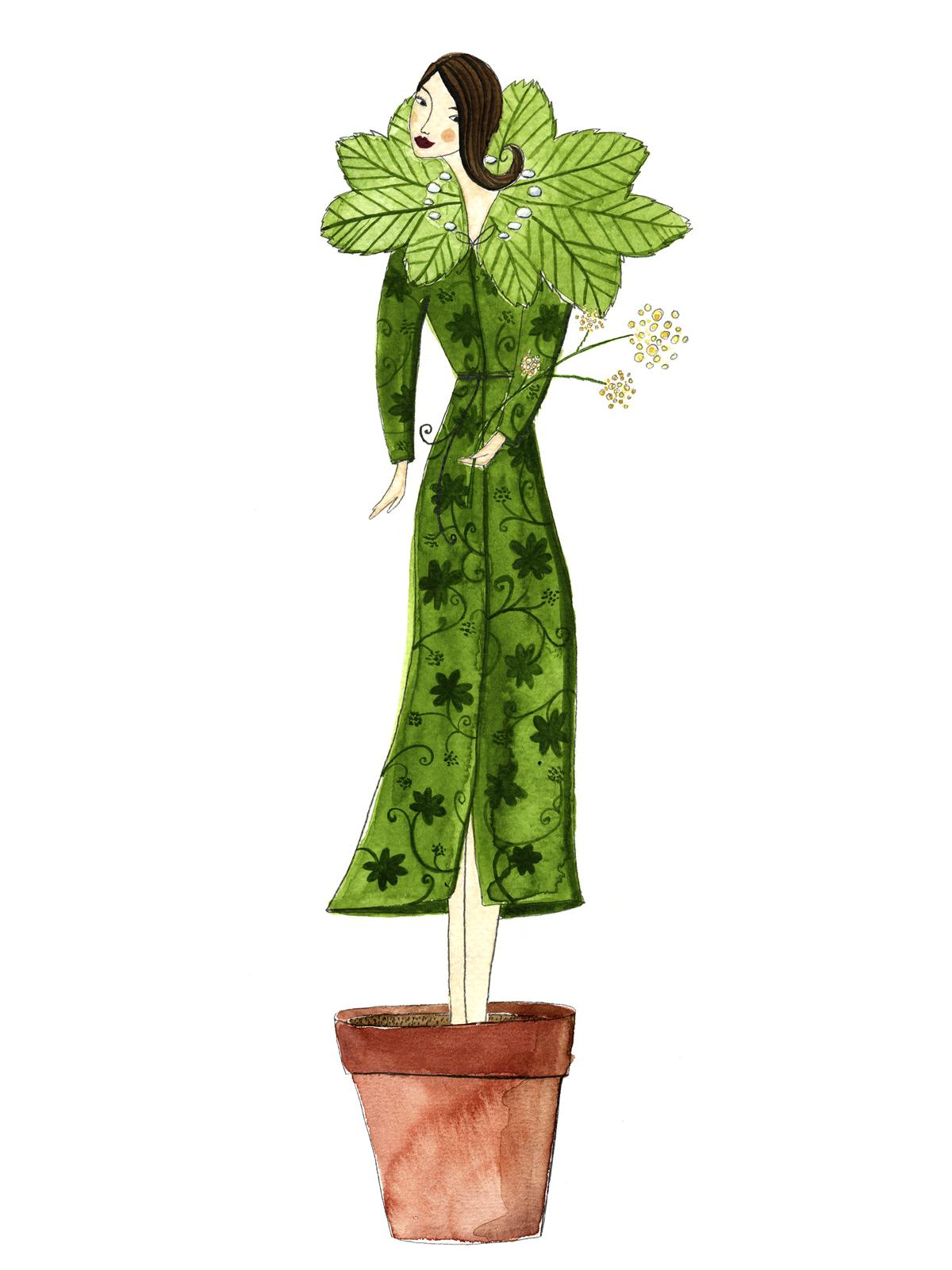 Pflanzenlexikon Gartenflora
