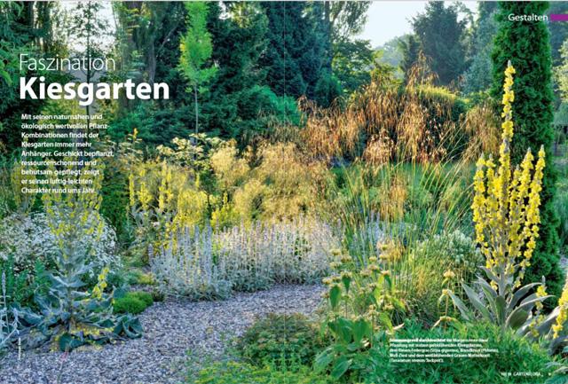 Fotos eines natürlich anmutenden Kiesgartens mit Gräsern und Stauden.
