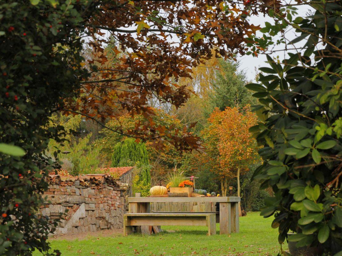 Gartenstimmung im Oktober: mit Gehölzen, deren Blätter im Herbst leuchten, und mit immergrünen Nadel- und Laubgehölzen