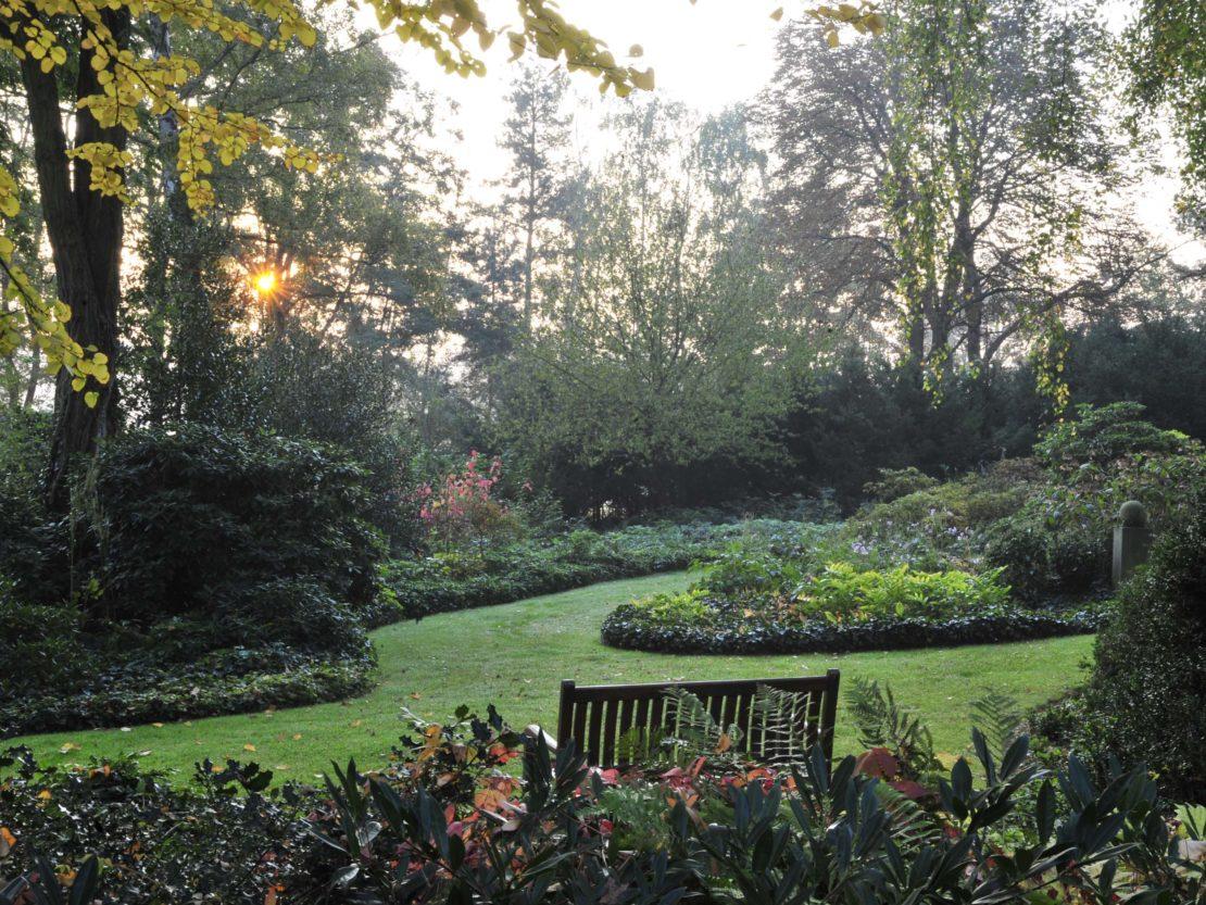 Bäume in sanftem Licht umrahnen einen weitläufigen Garten mit Rasen und Staudenbeeten