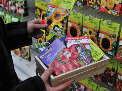 Zur Gartenvorbereitung im Winter gehört auch die Auswahl von neuem Saatgut im Fachhandel.