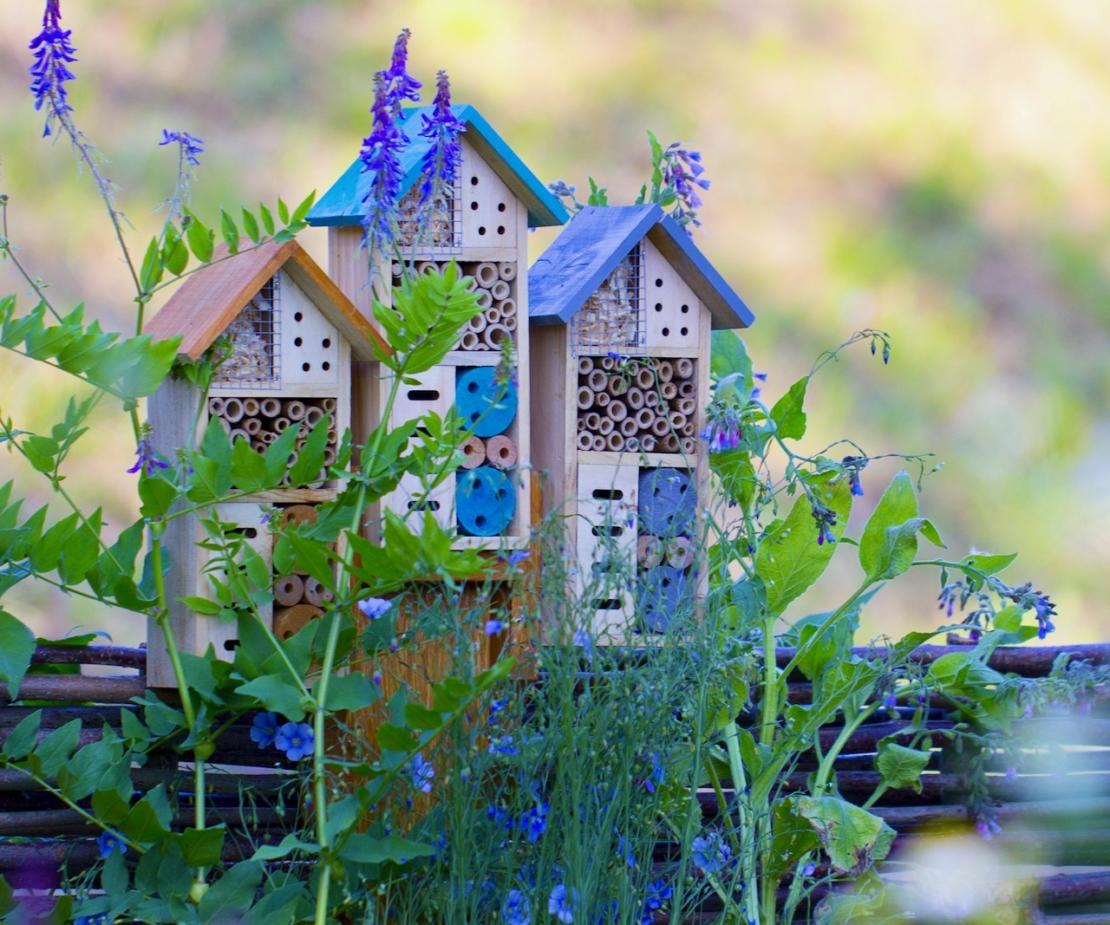 Insektenhotel im Garten Foto: AdobeStock_maykal