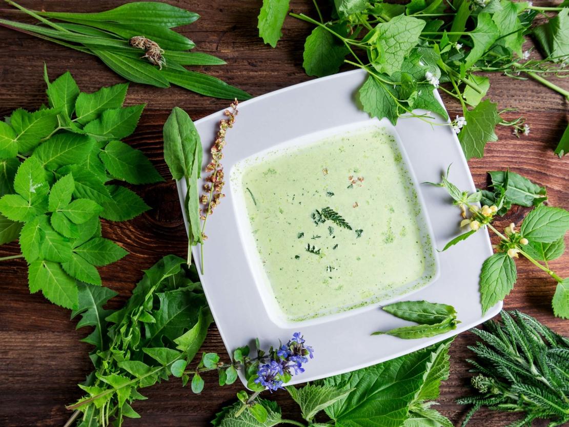 Suppe mit verschiedenen Wildkräutern
