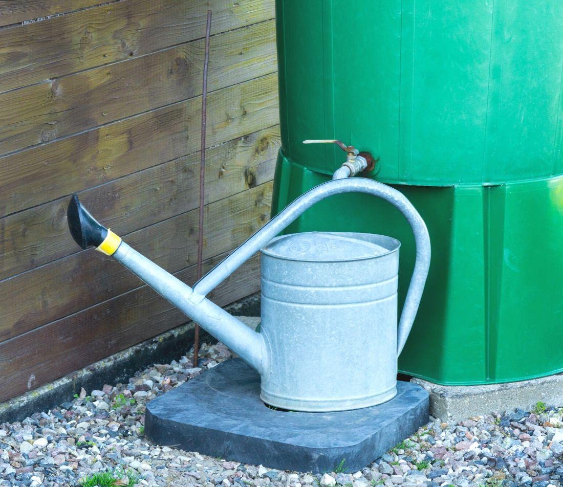 Regenwasser sammeln Foto: AdobeStock_tl6781