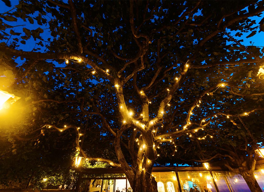 Lichtverschmutzung Foto: AdobeStock_ANR Production