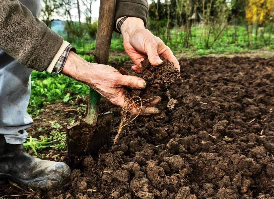 Gartenboden verbessern Foto: AdobeStock_Ingo_Bartussek