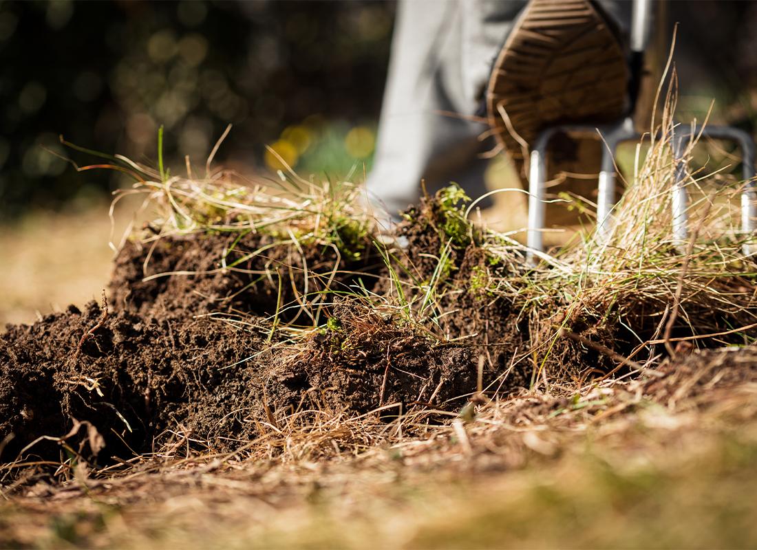 Gartenboden verbessern Foto: AdobeStock_M.Dörr & M.Frommherz